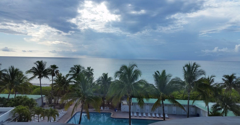 Pasión Por Miami